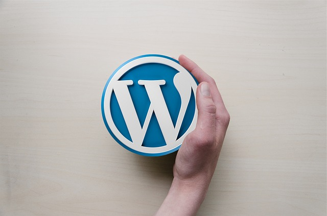 [WordPress]Diver入力補助「トグル」の使い方[Gutenberg]編